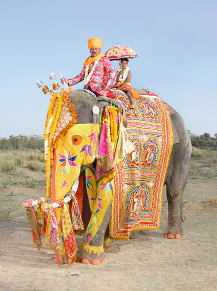 04-india-elephant-painted-yellow-mahout-and-son-580v