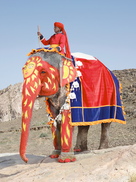 09-india-elephant-painted-red-sunburst-580v