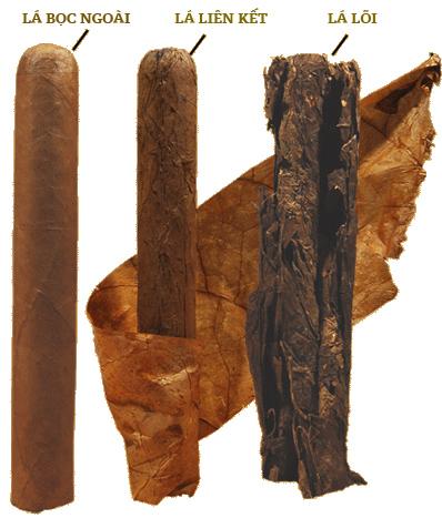 cấu tạo xì gà