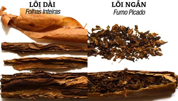 Lõi xì-gà dài và lõi ngắn
