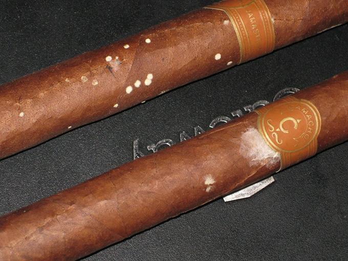 mold cigar