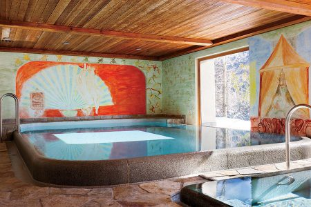 item10.rendition.slideshowHorizontal.art-pools-11-francesco-clemente-saint-moritz-switzerland