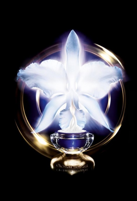 2013_creme-orchidee