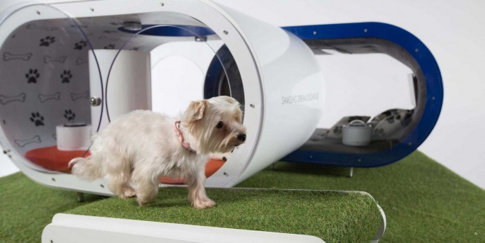 samsung-has-designed-a-39000-high-tech-doghouse-with-a-treadmill-and-hot-tub