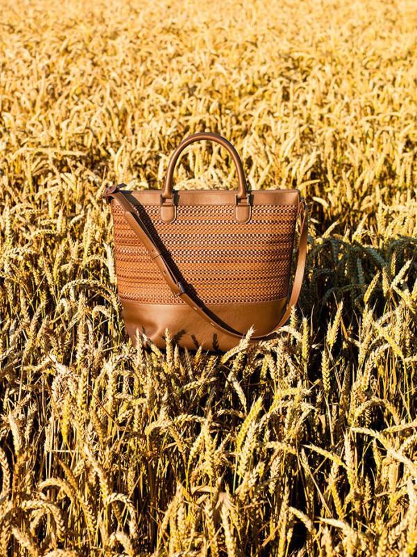 Delvaux-bag-Spring-Summer-2015-every-d-tote-toile-de-cuir-panier-allure-vegetal